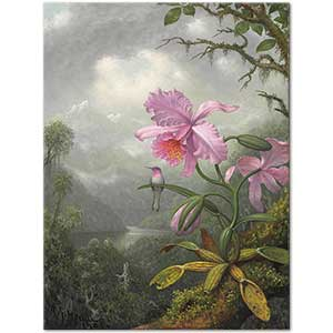 Martin Johnson Heade Hummingbird Perched on the Orchid Art Print