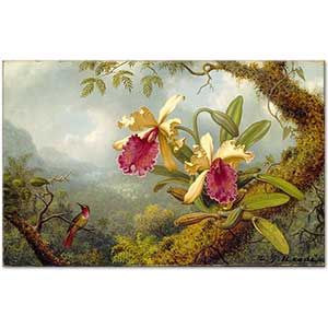Martin Johnson Heade Orchids and Hummingbird Art Print