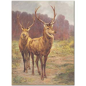 Rosa Bonheur Monarchs of the Forest Art Print